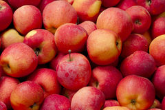 Background of red apples Stock Photos