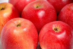Background from red apples. Background from fresh red apples Stock Images
