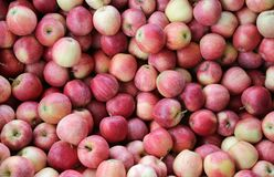 Background of red apples Stock Image