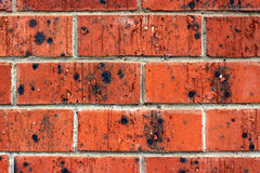 Background - Red Brick Wall with Black Glazing. Grunge Background - Red Brick Wall with Black Markings Royalty Free Stock Images