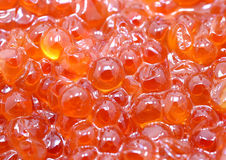 Background red caviar. Photo background macro bright delicious fish red caviar stock images