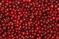 Background from a red cherry. Background from a red ripe cherry royalty free stock image