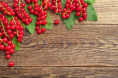 Background with red currants Stock Images