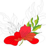 Background with red flowers Royalty Free Stock Photos