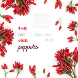 Background with Red hot chili peppers isolated Royalty Free Stock Photos