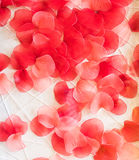Background of red petals Royalty Free Stock Photography