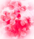 Background of red petals Stock Photo