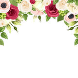 Background with red, pink and white flowers. Vector illustration. Vector background with red, pink and white roses, lisianthuses and anemone flowers and green Royalty Free Stock Images