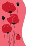 Background with red poppies Stock Image