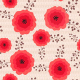 Background with red poppy Stock Photos