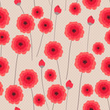 Background with red poppy Royalty Free Stock Image