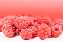 Background of red raspberries Royalty Free Stock Images