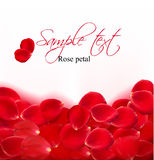 Background of red rose petals.  Vector Stock Photo