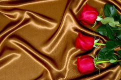 Background with red roses on fabric Stock Images