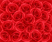 Background with red roses. Vector. Royalty Free Stock Photography