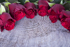 Background with red Roses Stock Photos