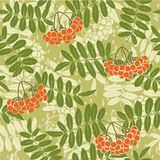 Background of red rowan seamless pattern Stock Photography