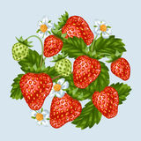 Background with red strawberries. Illustration of berries and leaves.  Royalty Free Stock Image