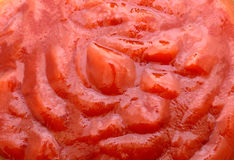 Background red tomato paste Stock Photography