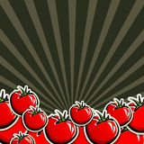 Background with red tomatoes Stock Photo