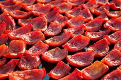 Background of red tomatoes drying outdoors in the sun Royalty Free Stock Images