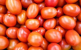 Background of red tomatoes. Stock Photos