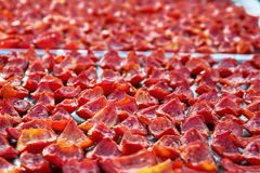 Background of red tomatoes slices drying in the sunlight Royalty Free Stock Photos
