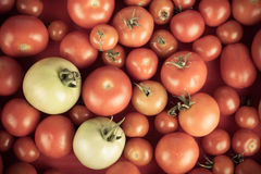 Background of red tomatoes and two green Stock Photos