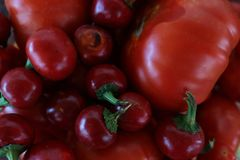 Background red tomatoes. Red tomatoes for background whit some light from left stock image