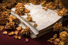 Background in retro style. Dry roses scattered on old book Stock Photography