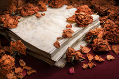 Background in retro style. Dry roses scattered on old book Royalty Free Stock Photography
