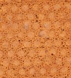 Background of reverse side biscuit. Macro. Royalty Free Stock Photos