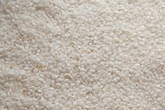 Background of rice Stock Photo