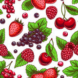 Background with ripe berries Stock Image