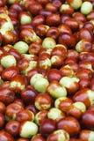 Background of ripe berries jujube closeup Stock Photos