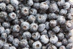 Background of ripe blueberries Stock Photo