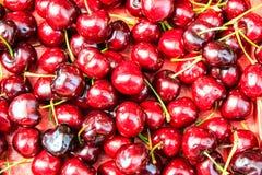 Background of ripe cherries Stock Photos