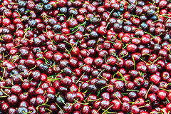 Background of ripe cherries Royalty Free Stock Images