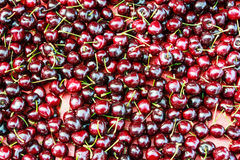 Background of ripe cherries Stock Images