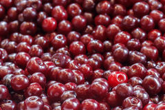 Background from a ripe cherry. Background from a red ripe cherry stock photos