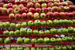 Background of ripe and delicious apples Royalty Free Stock Photos