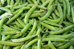 Background from ripe green pea pod Stock Photo