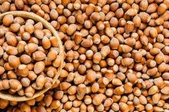 Background of ripe hazelnuts stock photos
