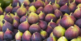 Background of ripe juicy figs on the market stalls Royalty Free Stock Image