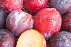 Background with ripe plums Royalty Free Stock Image