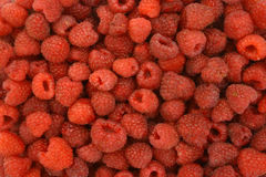 Background of ripe raspberries Stock Photos