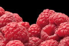 Background from ripe raspberry Royalty Free Stock Images