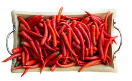 Background of ripe red chili peppers . Stock Images