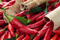 Red chili peppers. Background of ripe red chili peppers with leaves Royalty Free Stock Photos