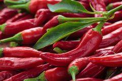 Red chili peppers. Background of ripe red chili peppers with leaves Royalty Free Stock Image
